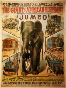 fritz-elephant-tours-06