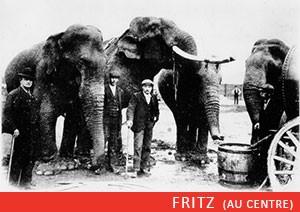 fritz-elephant-ep2-4