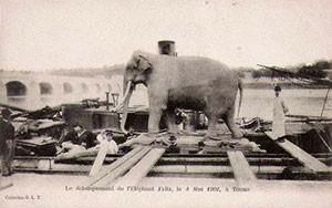 fritz-elephant-ep3-3