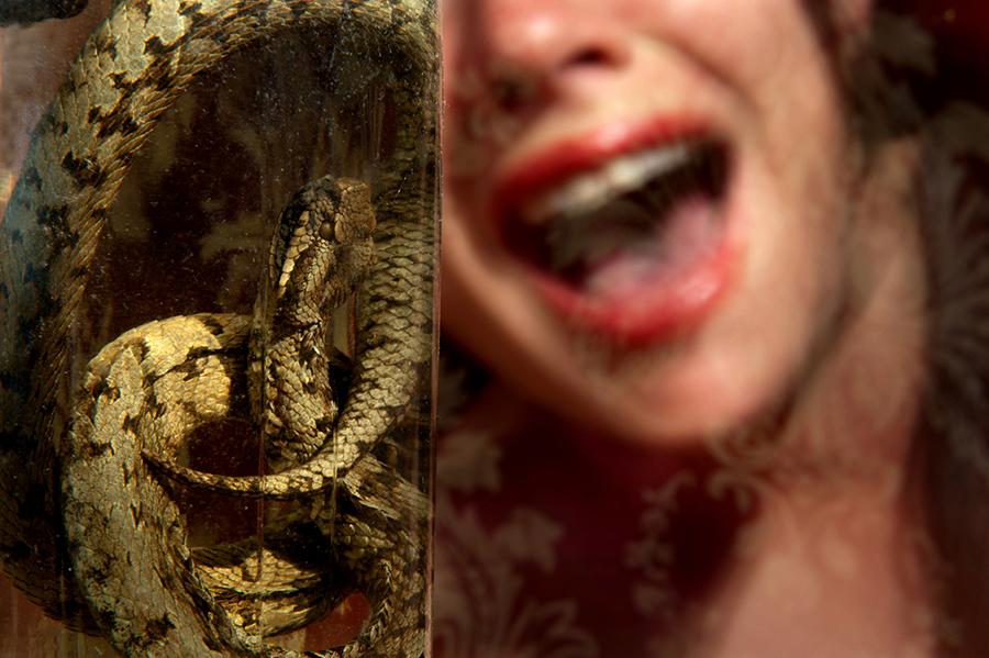serpent-sandra-daveau