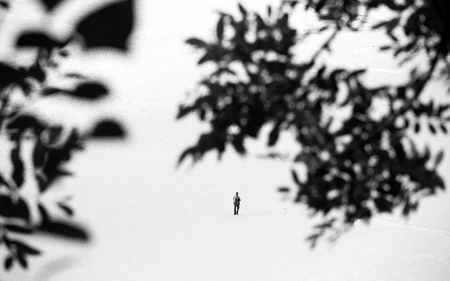 battements-de-loire-06